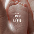 TEST : The Tree of Life - Blu-ray