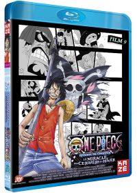 One Piece - Le Film 9 : Episode de Chopper : Le miracle des Cerisiers en Hiver - Blu-ray