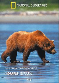 National Geographic - Grands carnivores : l'ours brun - DVD