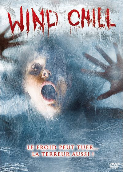 Wind Chill - DVD