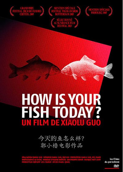 How Is Your Fish Today? - DVD