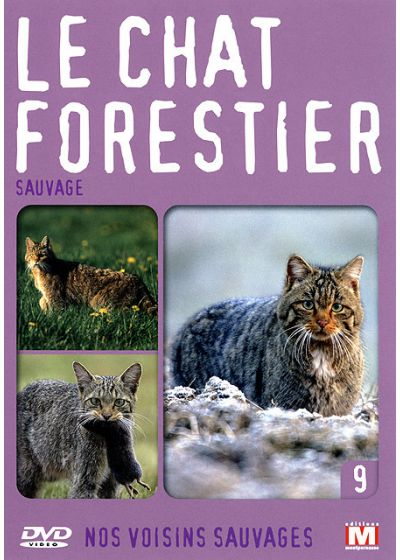 Nos voisins sauvages Vol. 9 - Le chat forestier : Sauvage - DVD