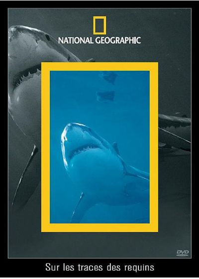 National Geographic - Sur les traces des requins - DVD