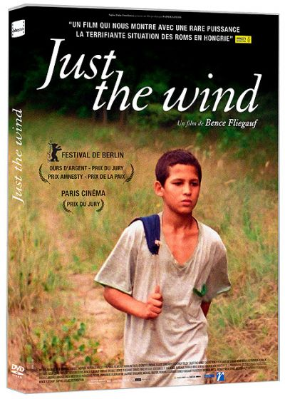 Just the Wind - DVD
