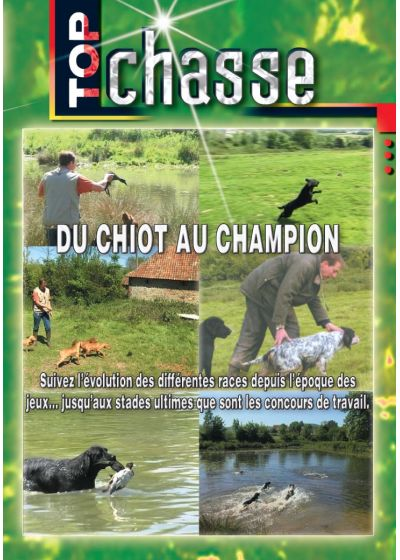 Du chiot au champion - DVD