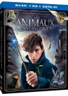 Les Animaux fantastiques (Combo Blu-ray + DVD) - Blu-ray