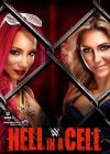 Hell in a Cell 2016 - DVD