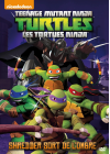 Les Tortues Ninja - Vol. 2 : Shredder sort de l'ombre - DVD