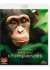Chimpanzés - Blu-ray