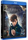 Les Animaux fantastiques - Blu-ray